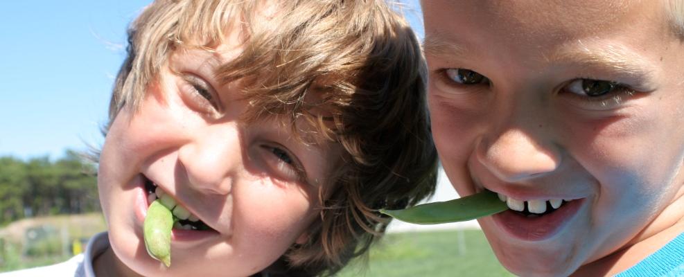 PageLines- ChildrensCommunityGarden-Boys.jpg